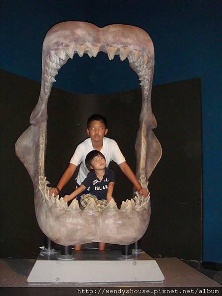 海洋公園2011.08.13-24.JPG