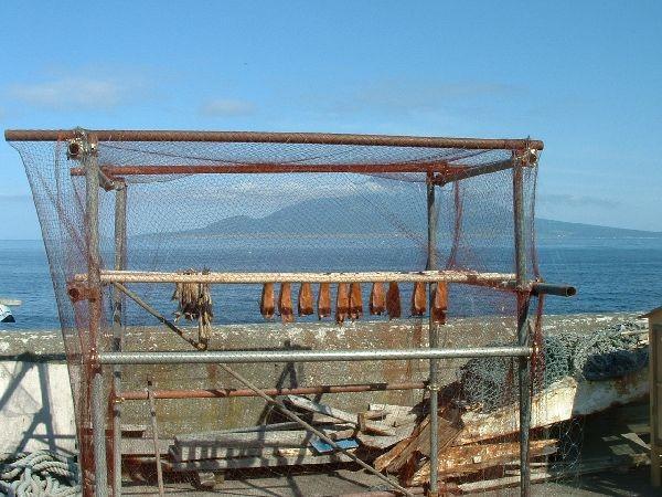 064禮文島-南邊漁村曬魚乾