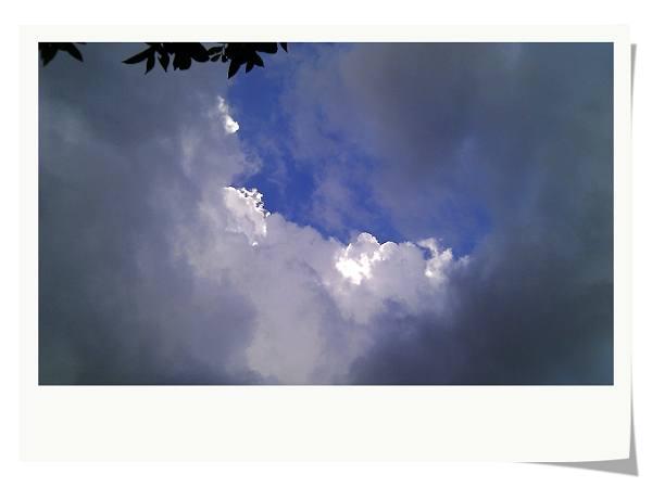 IMAG0126.jpg