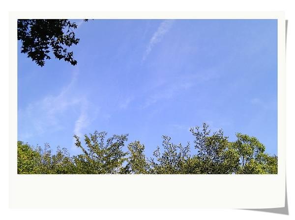 IMAG0191.jpg