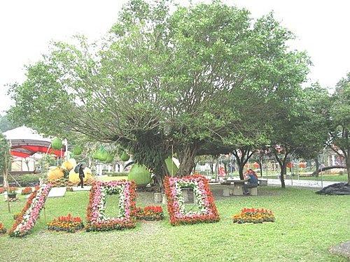 ysl-7.jpg