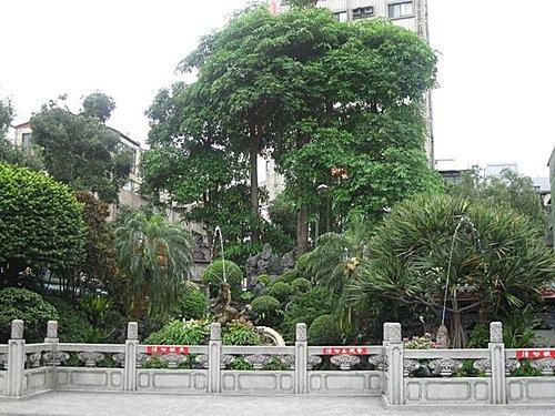 wanhua-b16.jpg