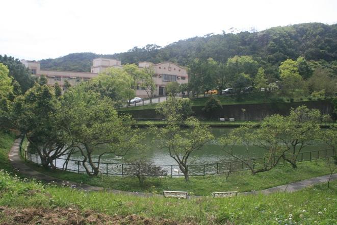 pond-5.jpg
