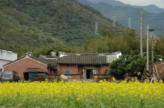関山-4.jpg
