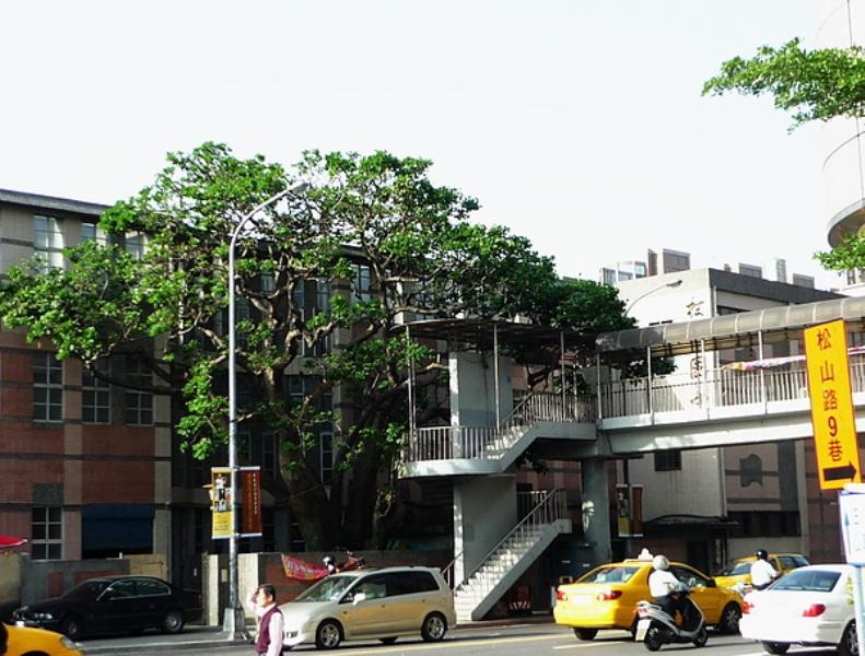 松山-a5.jpg