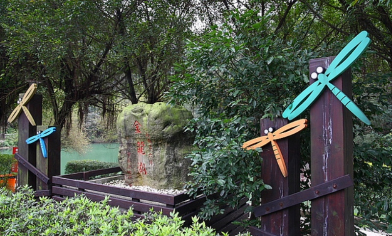 金龍湖-3.jpg