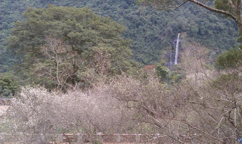 烏來高砂公園-5.jpg