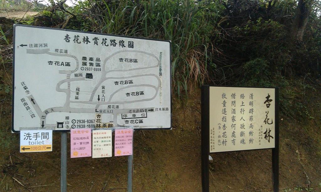 杏花林-2.jpg