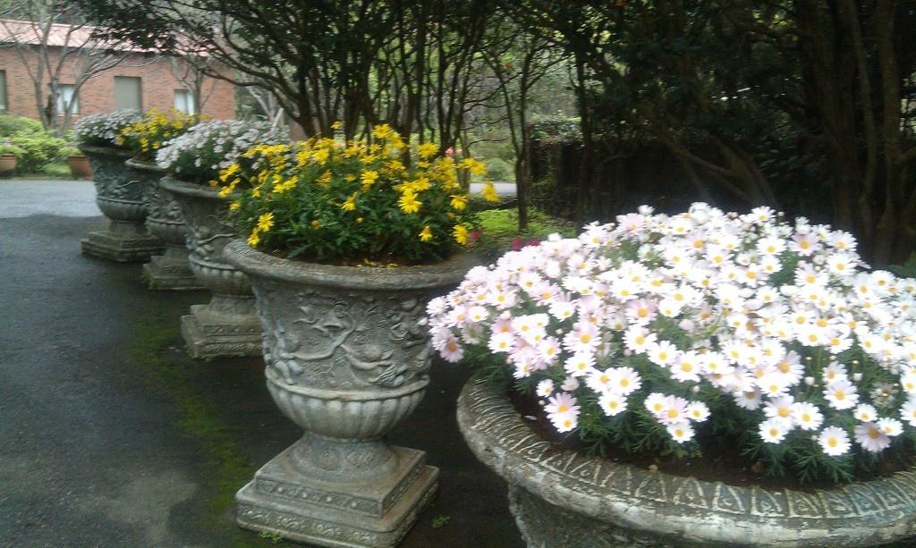 花卉中心-15.jpg
