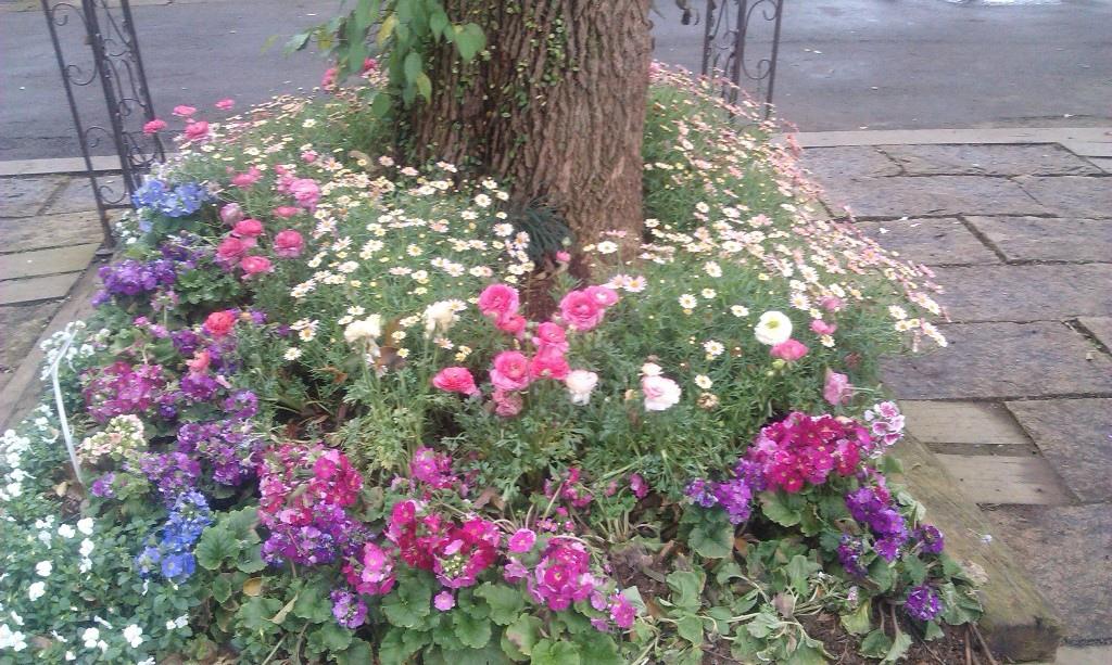 花卉中心-16.jpg