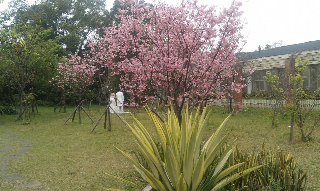花卉中心-25.jpg