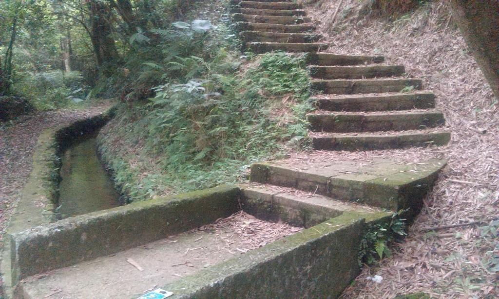 古圳-3.jpg