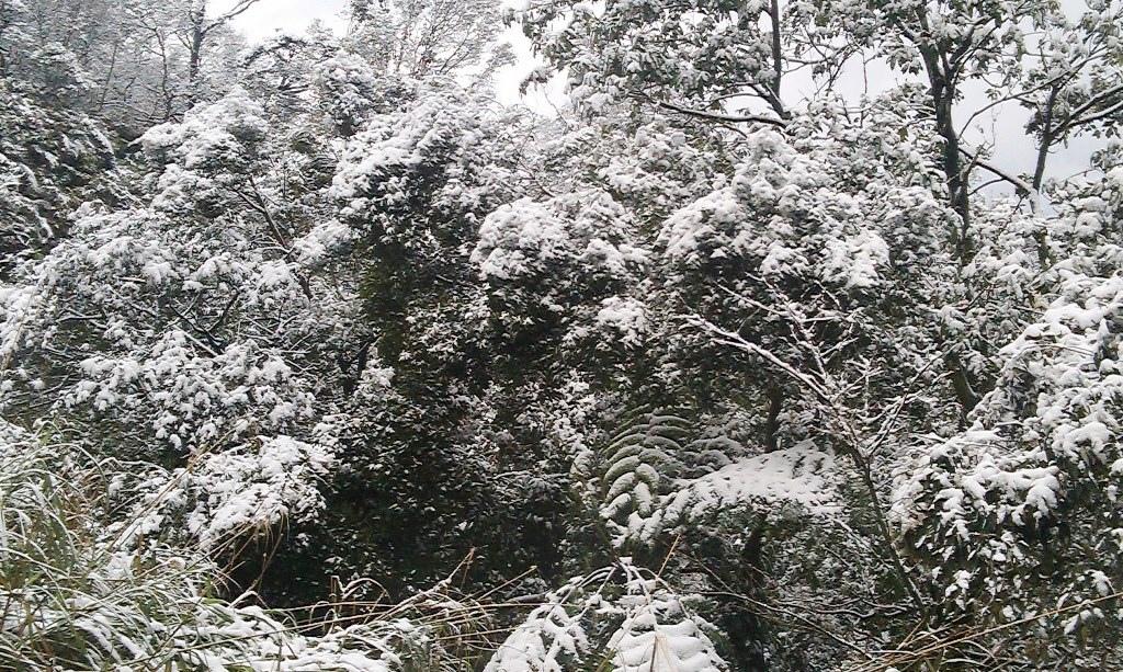 光明寺-雪1.jpg