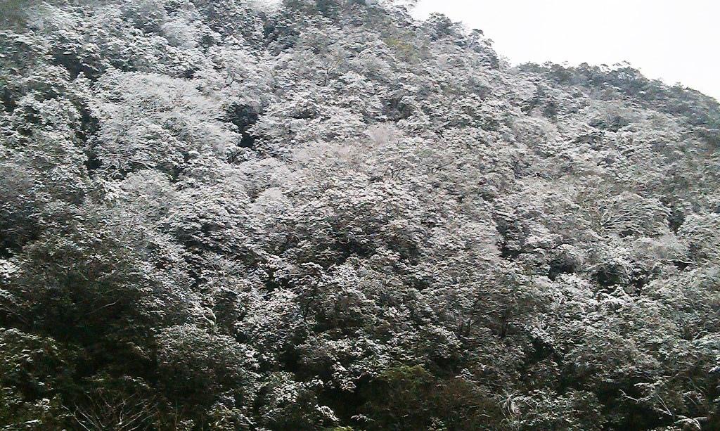 鵠鵠崙-雪1.jpg