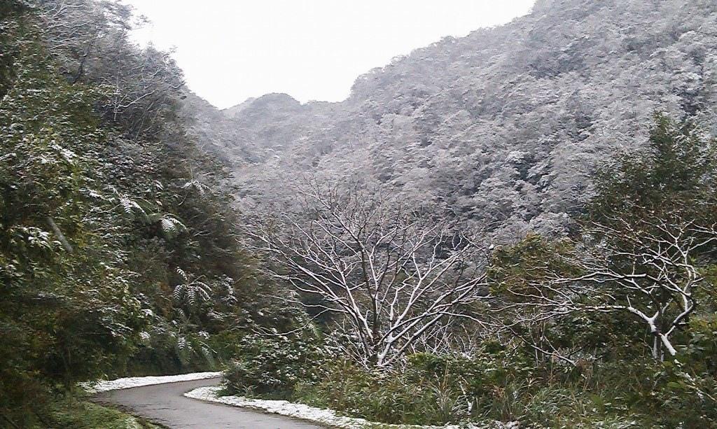 鵠鵠崙-雪2.jpg
