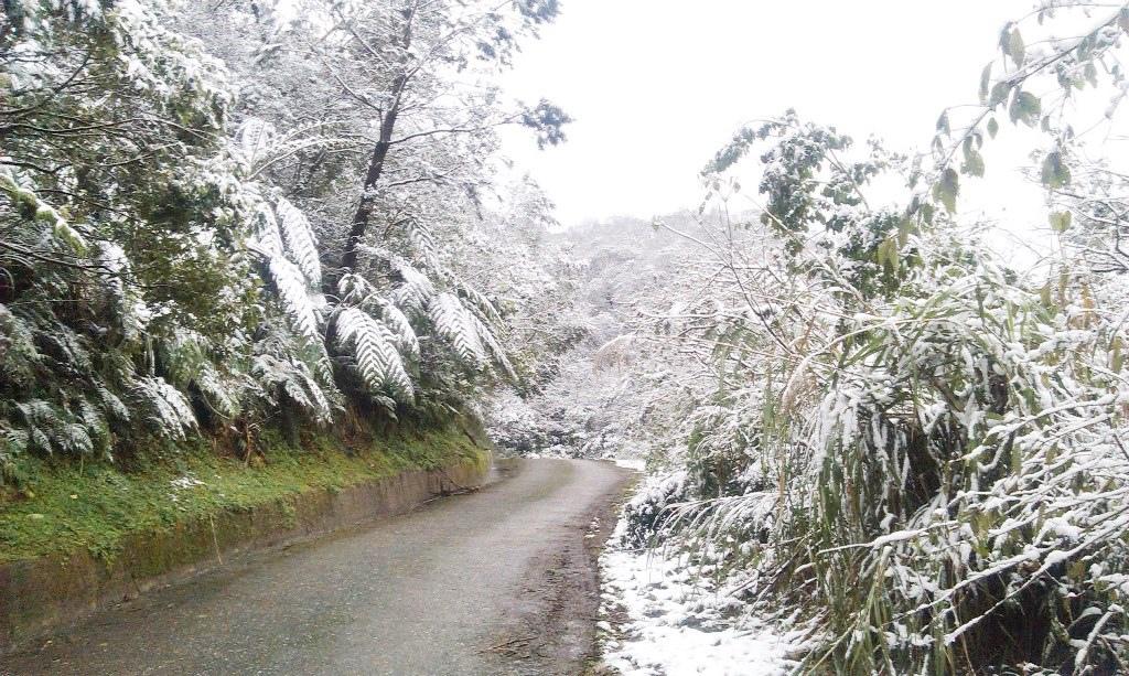 鵠鵠崙-雪5.jpg