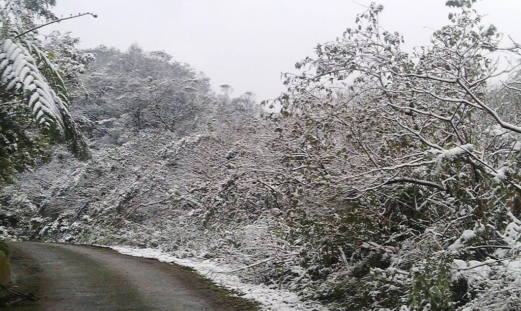 鵠鵠崙-雪6.jpg