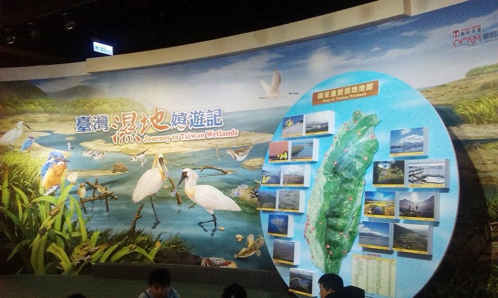 陽明海洋藝術館-3.jpg