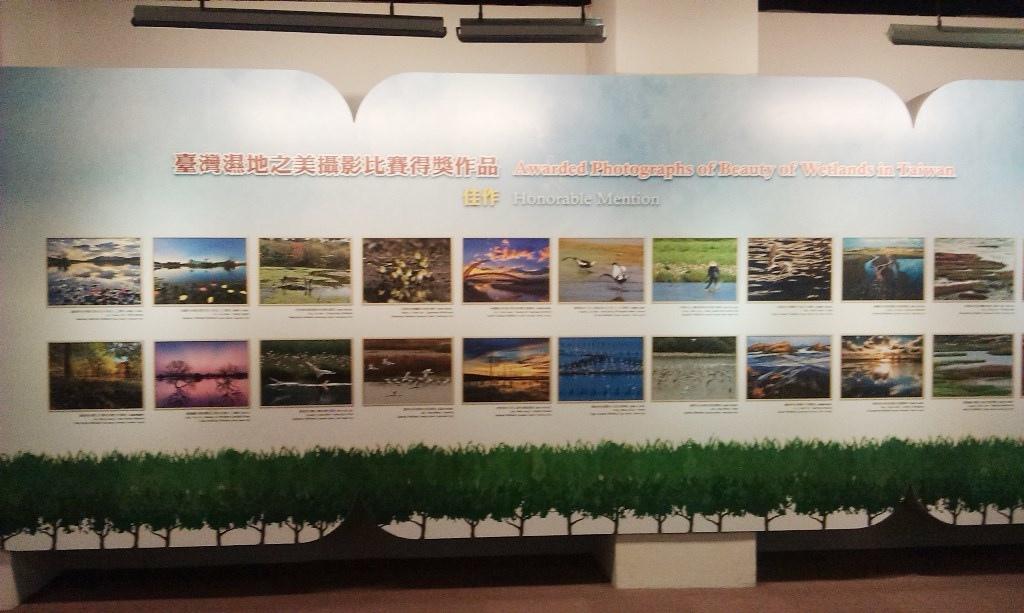 陽明海洋藝術館-4.jpg