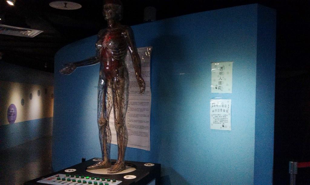 人體的奧秘-11.jpg