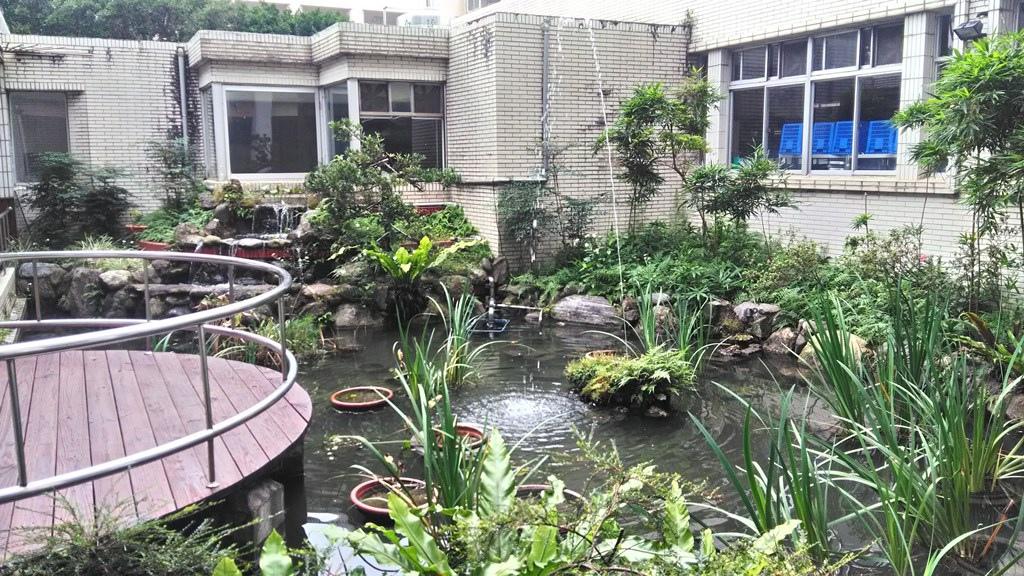 木柵國小-水生態池.jpg
