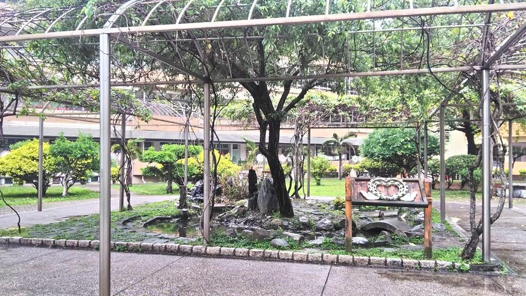 大橋國小-校園生態池.jpg