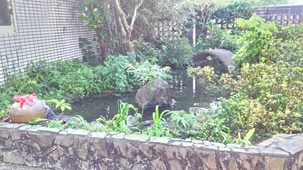 瓜山國小-生態池.jpg
