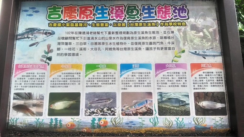 吉慶國小-原生溪魚池.jpg