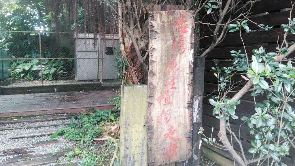 經國管理學院-臺灣原生植物走廊.jpg