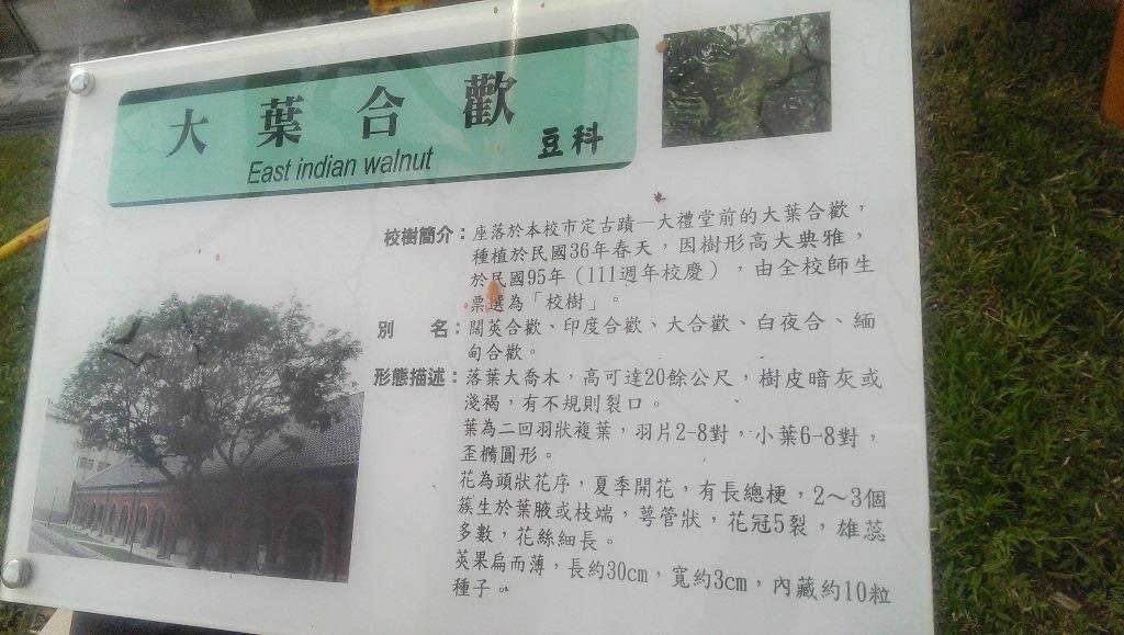 臺北教大-票選校樹説明.jpg