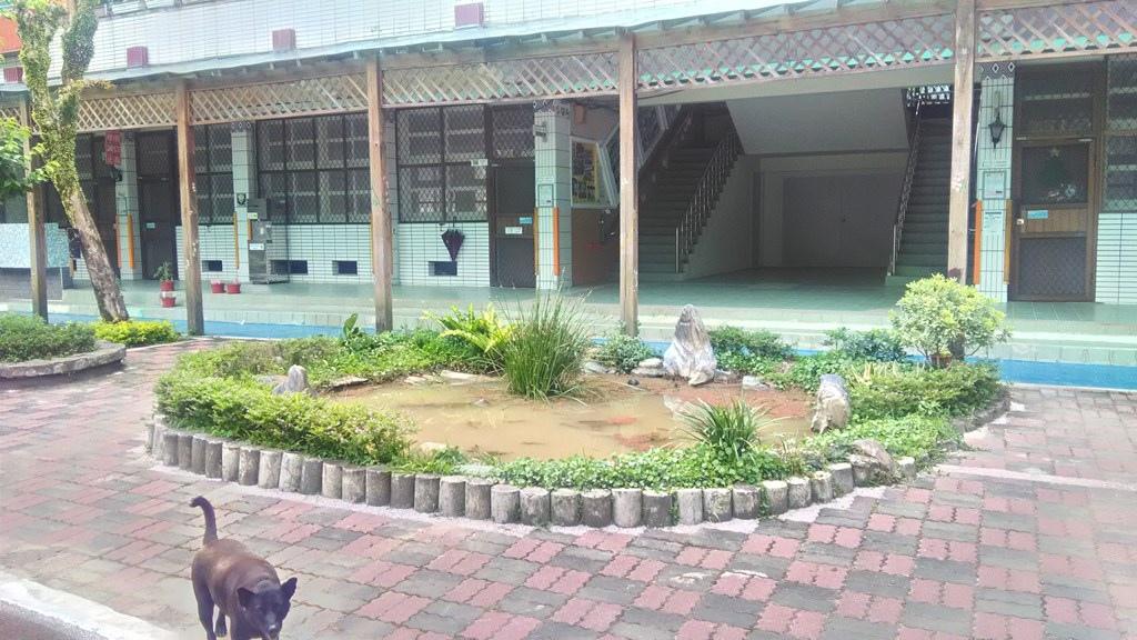 龜山國小-水生態池.jpg