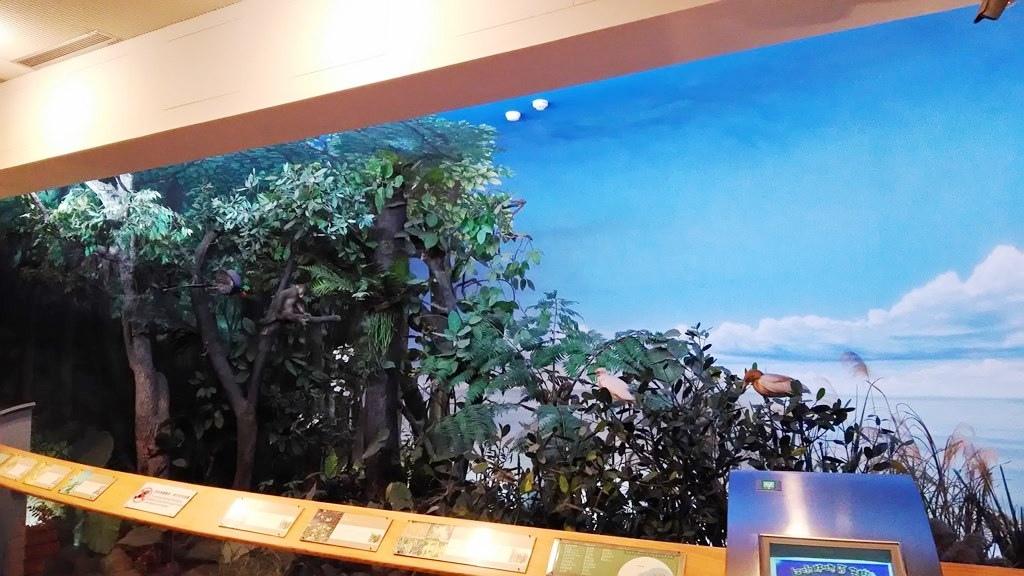 常展-臺灣的生物分佈6.jpg