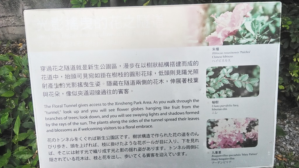 花博公園美術館區-花之隧道2.jpg