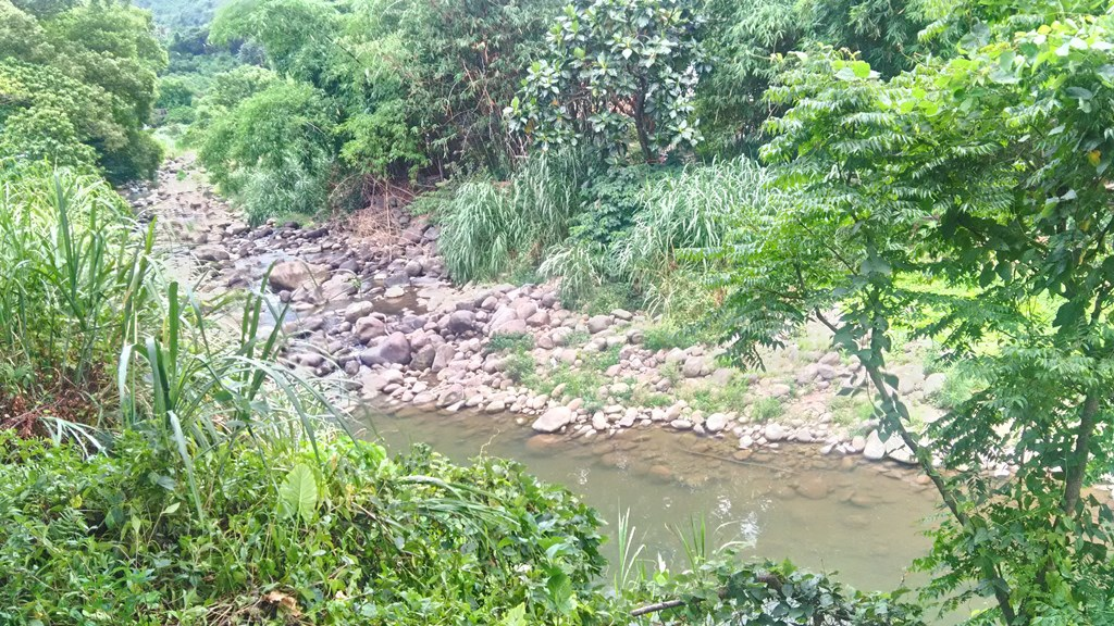 外雙溪公園-6.jpg