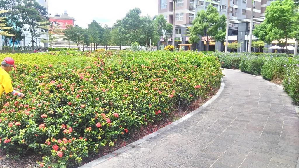 德行公園-4.jpg