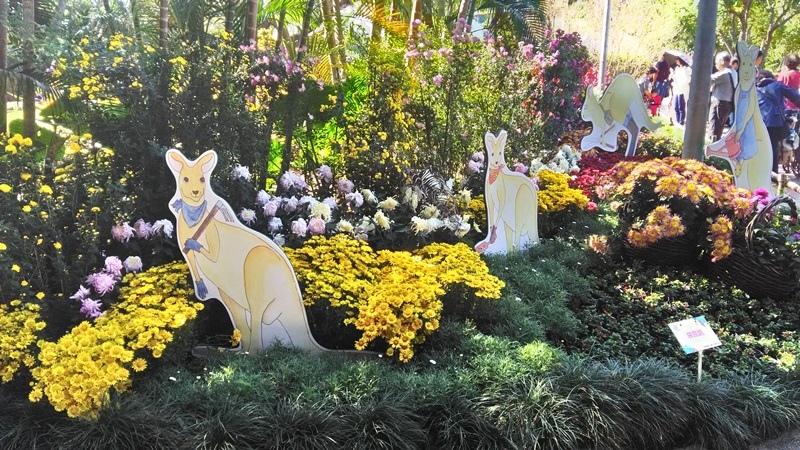 士林官邸菊展2018-9.jpg