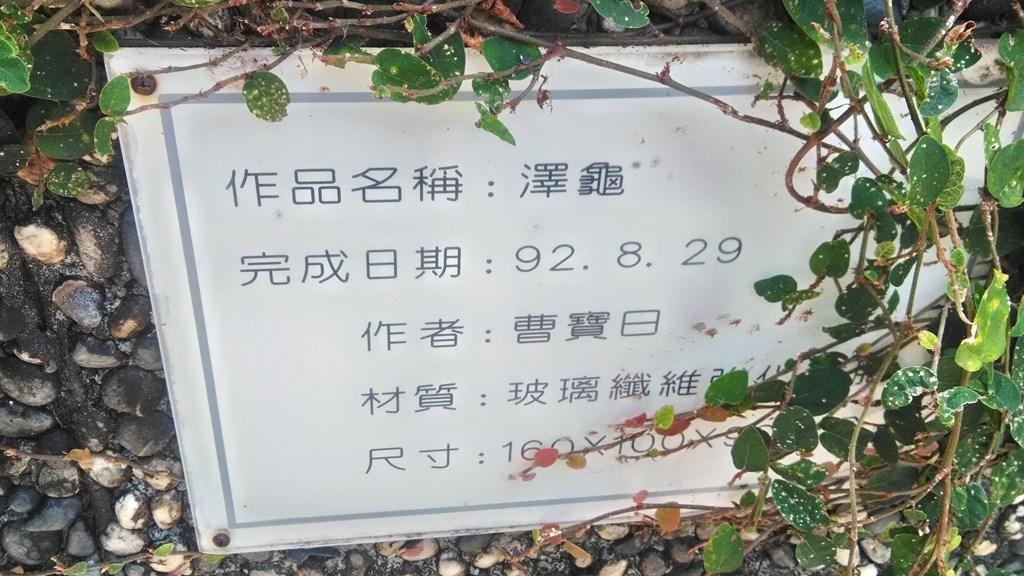 動物園-澤龜2.jpg