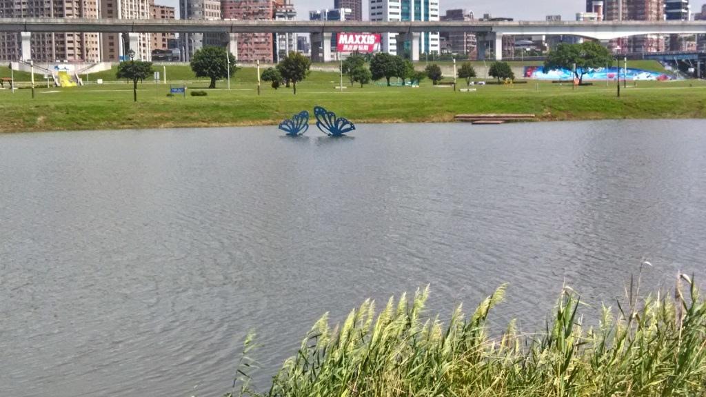 池中雙蝶.jpg