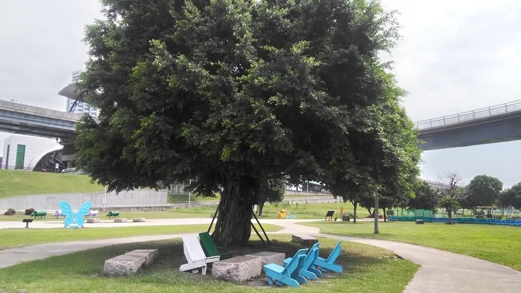 樹蔭休息區.jpg