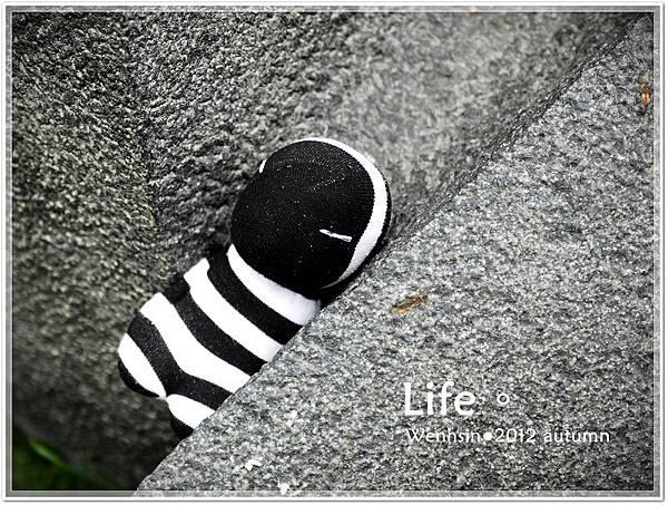 襪娃-艱苦郎