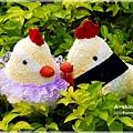 襪娃-帶路雞