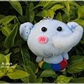 彩虹圈小象