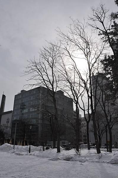 北海道-20110302-2 (51)_調整大小.JPG