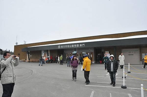 今天第一站,旭山動物園,YA!