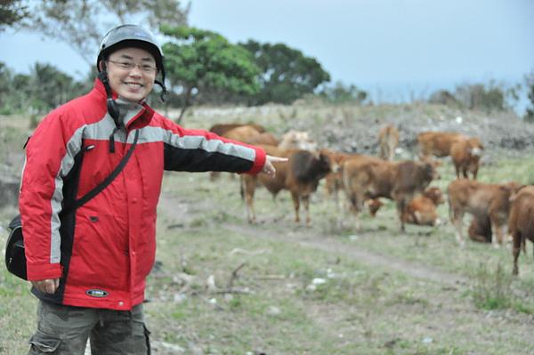 路上遇到一群黃牛,趁機下來拍照8.jpg