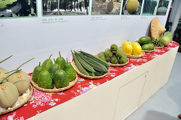 這裡有各種瓜瓜