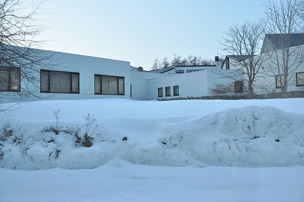 第二天早上窗外的雪景