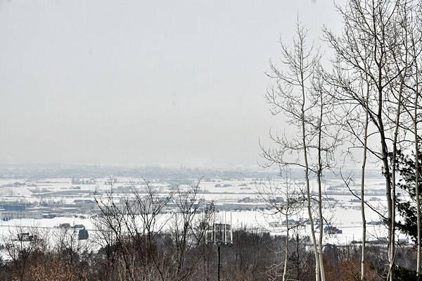 動物園在山上,可以遠眺旭川市