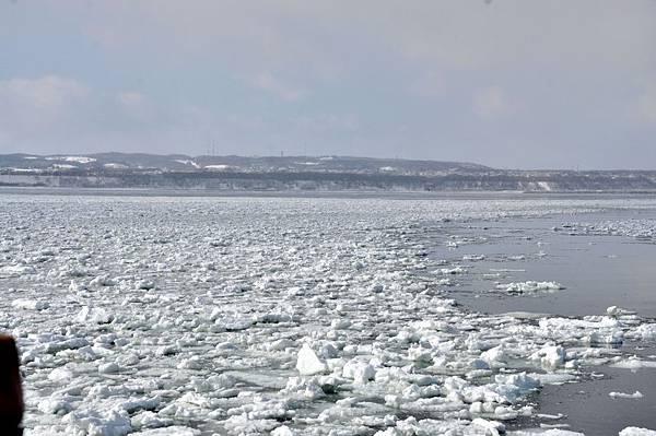 海冰來囉~~