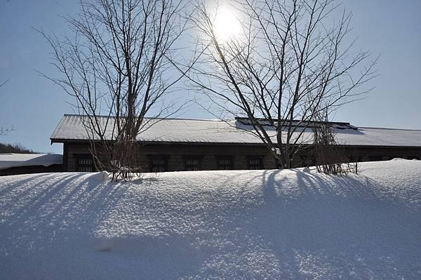 北海道-20110228-1 (391).JPG